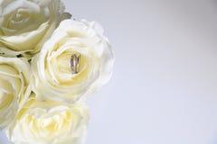 Free White Roses Stock Photos - 75525543