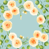 White roses background watercolor template on light green Royalty Free Stock Photo
