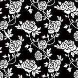 White roses on black Stock Images