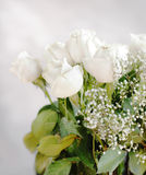 White roses bouquet Stock Photo