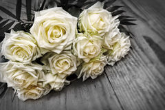 White roses bouquet. Stock Images