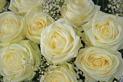 White roses in bridal bouquet. White roses, mixed with green in a bridal bouquet Royalty Free Stock Images