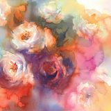 White roses colorful background watercolor Stock Photos
