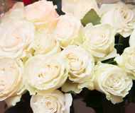 White roses, decoration in restaurant. Indoor Stock Photography
