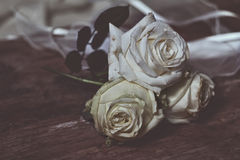 White roses, with effect Royalty Free Stock Photo