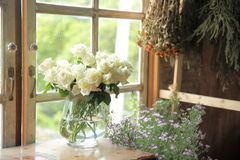 White roses and flowers Royalty Free Stock Images