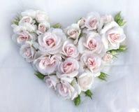 White roses flowers heart shape on white cloth background. Stock Image