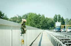 White roses flowers on the site of a car crash traffic accident on the bridge safety metal fence with a fatal outcome with vehicle. Movement selective focus stock images