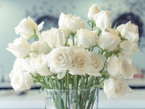 White roses. In a glass vase Royalty Free Stock Image