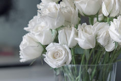 White roses. In a glass vase Stock Images