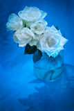 White roses in glass vase, blue theme. Valentine`s Day gift Stock Photos