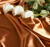 White roses on a golden satin Royalty Free Stock Photography