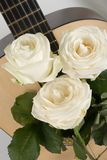 White roses, guitar Stock Photos