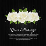White roses and leaf on black wood background vector design Royalty Free Stock Photography