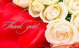 Free White Roses On Red Background With Text Thank You Royalty Free Stock Images - 178116819