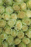 White roses and pearls Royalty Free Stock Photos
