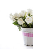 White roses with pink ribbon Royalty Free Stock Images