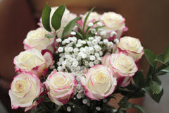 White Roses with Red Highlights Closeup. Beautiful bouquet of white roses with small amounts of red pink color the edges. Close-up floral arrangement of white Stock Photography