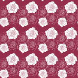 White roses on red pattern vector Royalty Free Stock Image