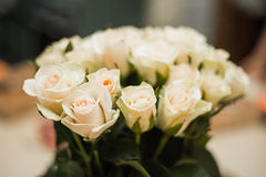 White roses. Soft bouquet of white roses Royalty Free Stock Photography