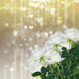 White roses on sparkling background Stock Photo