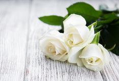 White roses on a table Royalty Free Stock Photo
