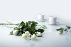 White roses and two white cups Stock Photography