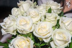 White roses at wedding. Beautiful white roses at a wedding with some decoration royalty free stock photo