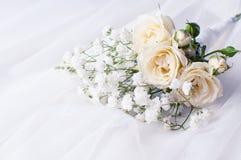 White roses on a white tulle Royalty Free Stock Photo