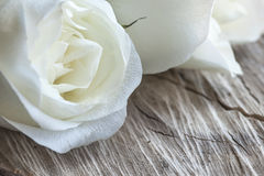 White Roses on Wood Stock Photos