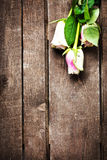 White roses on wooden background free text space.  Retro vintage Stock Photography