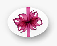 White Round Oval Gift Box with Pink Bow and Ribbon Royalty Free Stock Photos