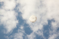 White round parachute on background blue sky with clouds. Stock Photos