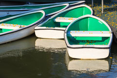 White Rowboats moored at small Pier with Falling Yellow Flowers. On the Floor Stock Image