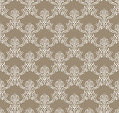 White Royal Flower Seamless Pattern on brown Stock Image