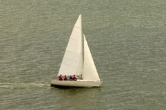 White Sail Boat. Sailing in the Gulf of Mexico near St,. Petersburg, Florida Royalty Free Stock Image