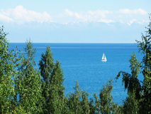 White sail on issyk-kul lake Royalty Free Stock Images