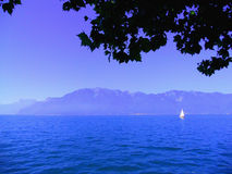 White sail on Lake Geneva Royalty Free Stock Images
