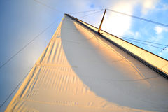 White sail Royalty Free Stock Photos