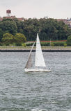 White Sailboat in Choppy Water Stock Images