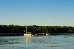 White sailboat on a quiet lake Royalty Free Stock Photos