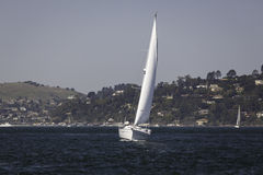 White sailboat in San Francisco bay on a sunny day Stock Photos