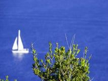 White sailboat in the sea. Summer season sea background Royalty Free Stock Photos