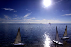 White sailboats Royalty Free Stock Photo