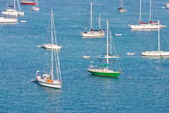 White Sailboats with One Green on Blue Water Royalty Free Stock Photo