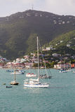 White Sailboats in St Thomas Bay Vertical Royalty Free Stock Image