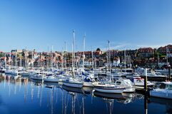 White Sailing Boats Near Shore during Daytime royalty free stock photo