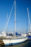 White sailing yacht on an anchor. In harbour Stock Photos