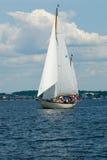 White sails Stock Photo