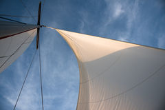 White sails against blue sky Stock Photos
